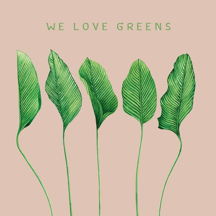Servilletas bambu 20u we love greens bn144