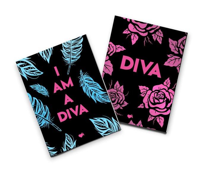 Pack 2 cuadernos cosidos lvr rosas y plumas