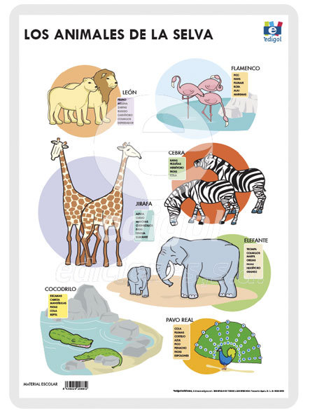 Lamina a3 infantil animales selva (42x29) me gusta saber