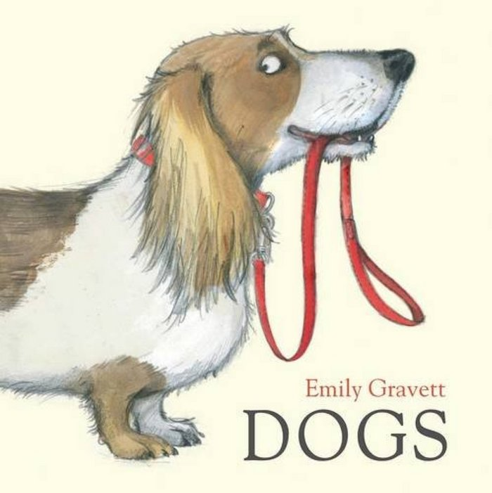 Dogs (hbk board book)