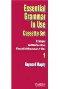 Essential grammar in use cass (2)