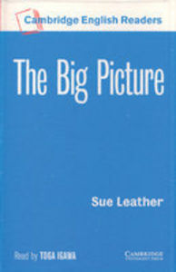 The big picture casettes