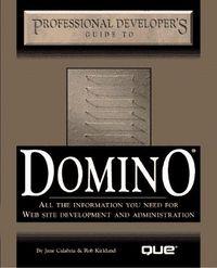 Domino professional dev.guide