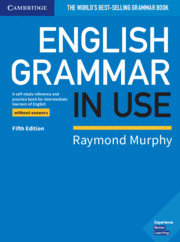 English grammar in use without answers 5th edition