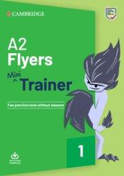 Fun skills mini flyers