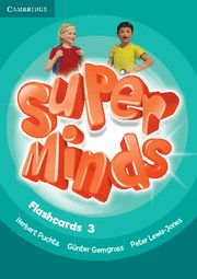 Super minds level 3 flashcards (pack of 83)