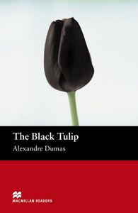 The black tulip mr (b)