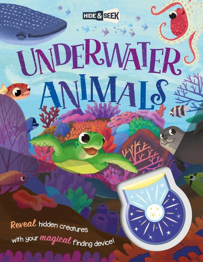 Hide and seek underwater animals magical l