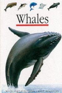 Whales (first discovery)