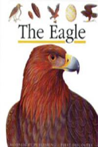 The eagle (first discovery)