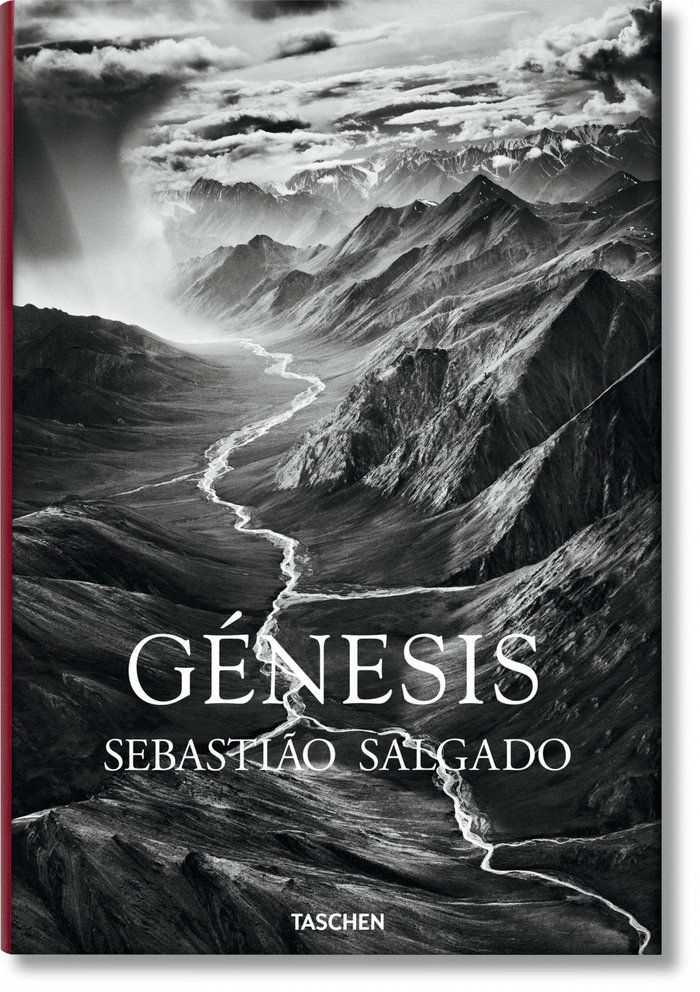 Salgado genesis (es)