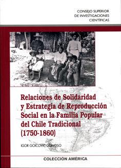Relaciones solidaridad y estrategia rep.social chile