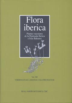 Flora iberica xii verbenacea