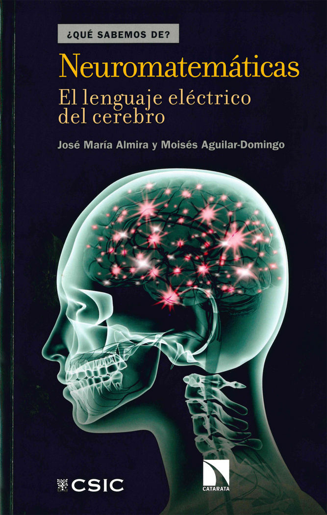 Neuromatematicas: el lenguaje electrico del cerebro