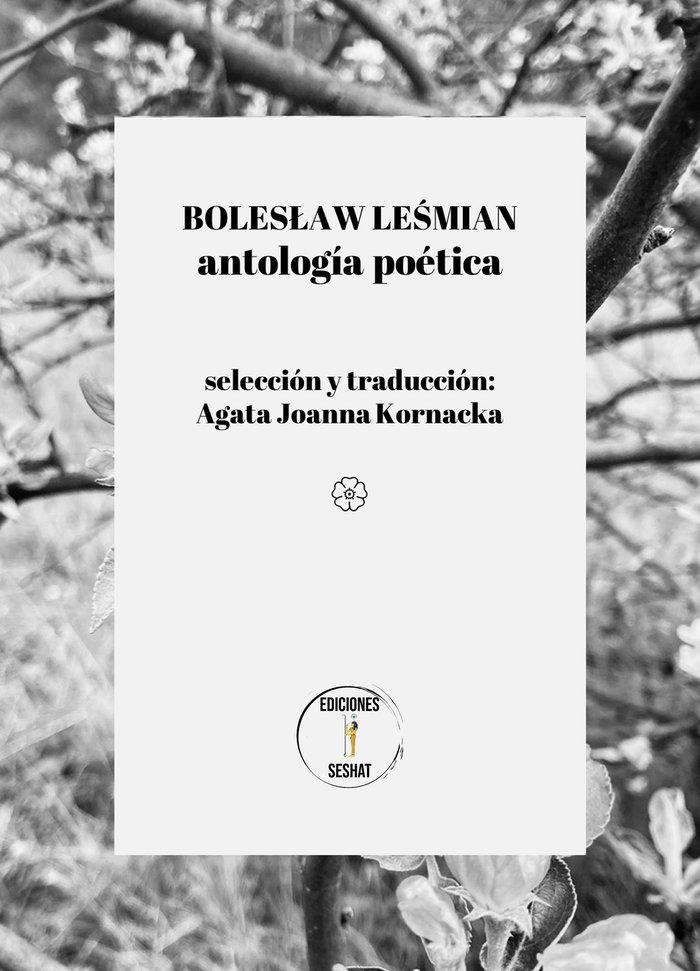 Boleslaw lesmian antologia poetica