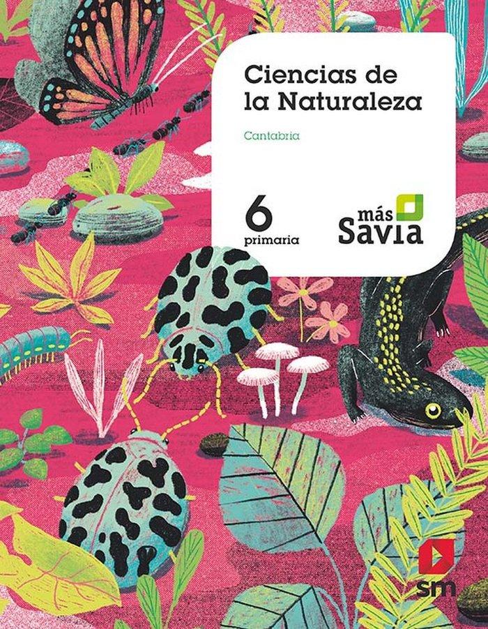 Ciencias naturaleza 6ºep cantabria 19 mas savia
