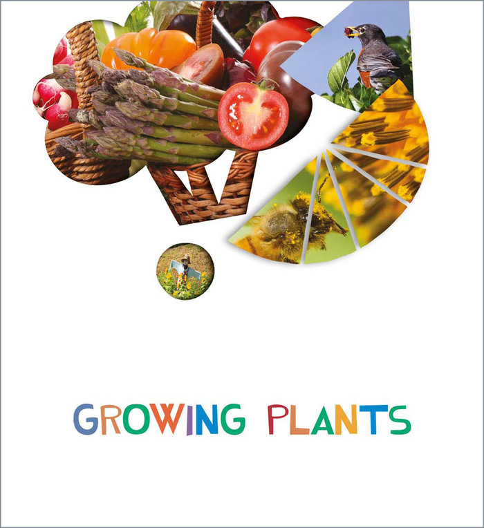 Growings plants 5años ei 20 look and see