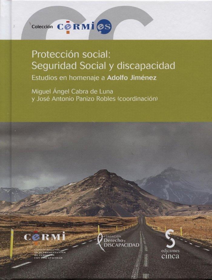 Proteccion social seguridad social y discapacidad