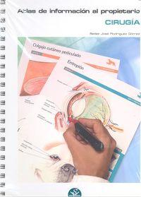 Atlas informacion al propietario cirugia