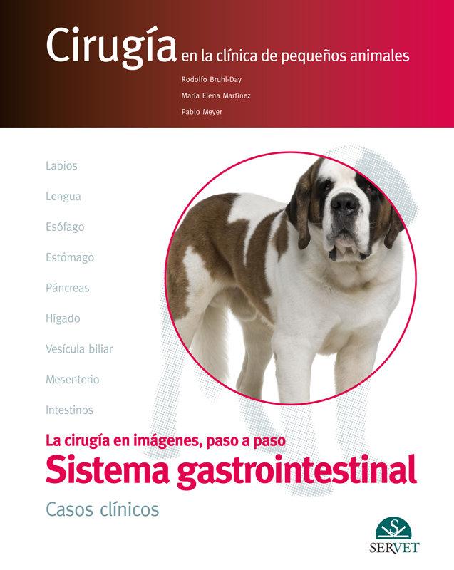 Aparato digestivo casos clinicos cirugia en clinica pequeño