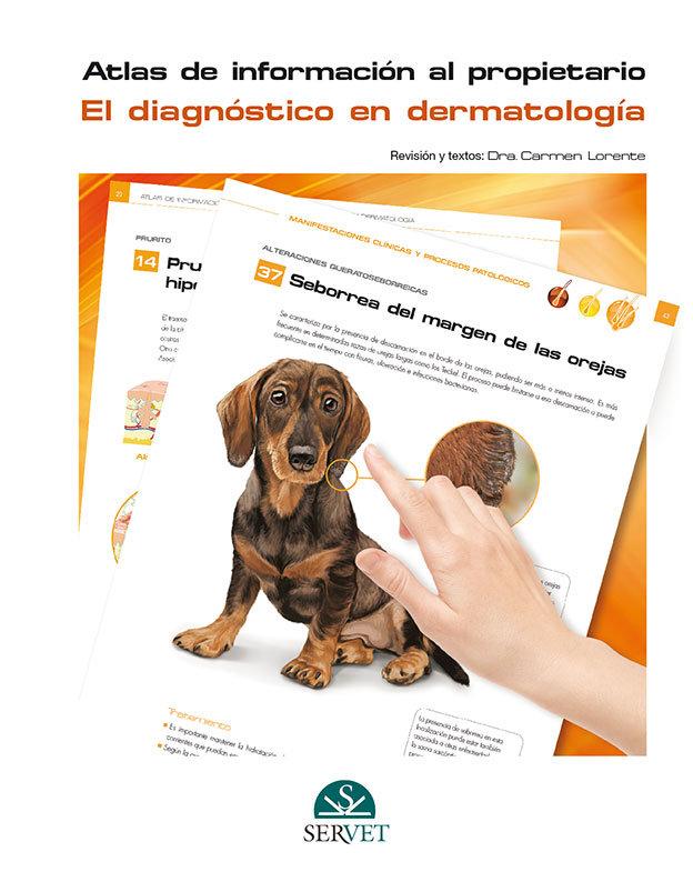 Diagnostico en dermatologia. atlas de informacion al propiet