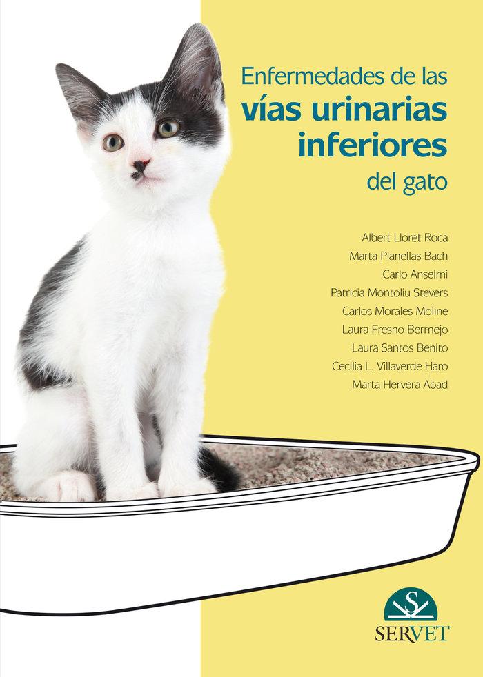 Enfermedades de las vias urinarias inferiores del gato