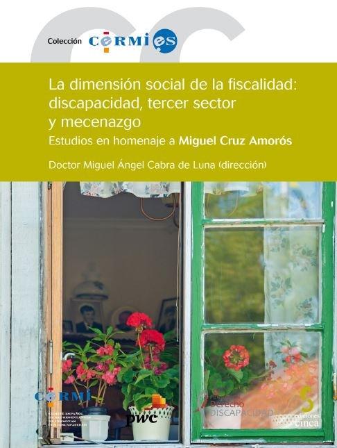 Dimension social de la fiscalidad discapacidad tercer secto