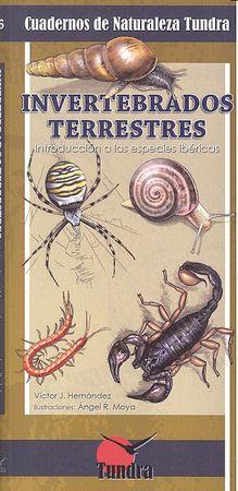 Cuadernos naturaleza 16 invertebrados terrestres