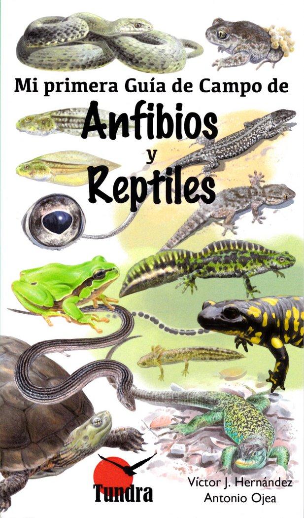 Mi primera guia de campo de anfibios y reptiles