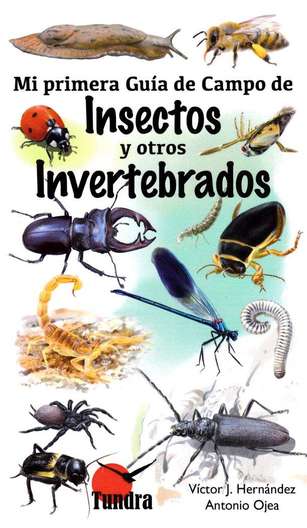 Mi primera guia de campo de insectos y otros invertebrados