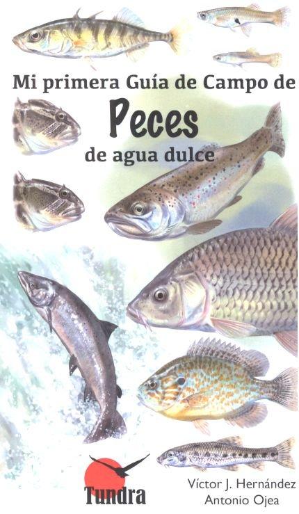 Mi primera guia campo de peces de agua dulce