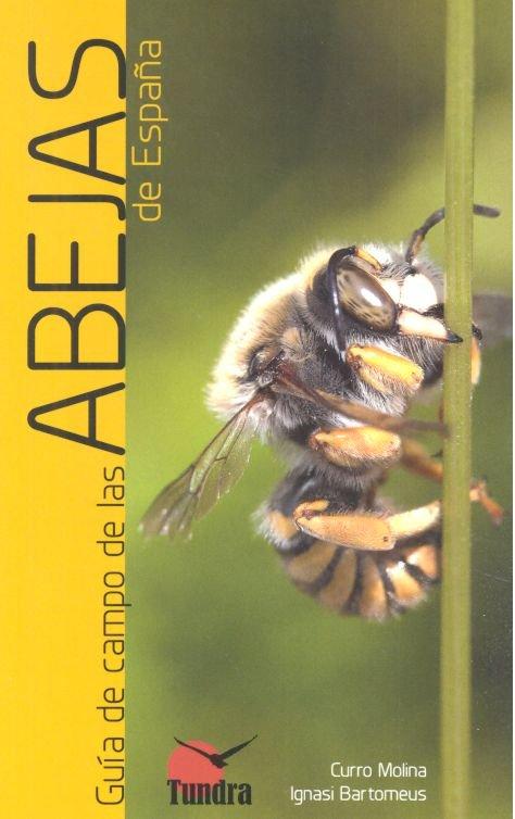 Guia de campo de las abejas de españa