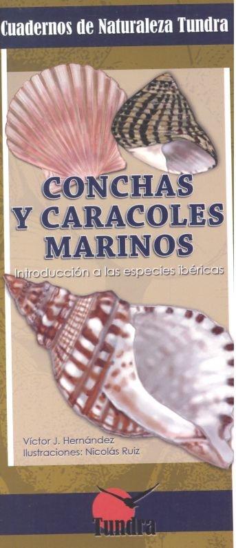 Conchas y caracoles marinos cuadernos de naturaleza