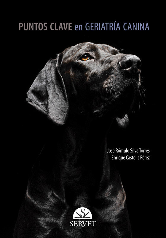 Puntos clave en geriatria canina