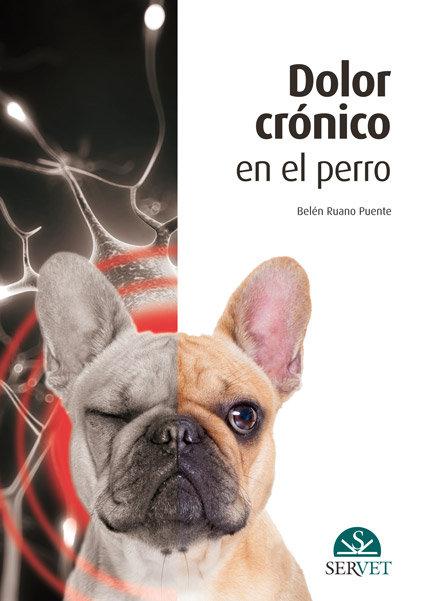 Dolor cronico en el perro