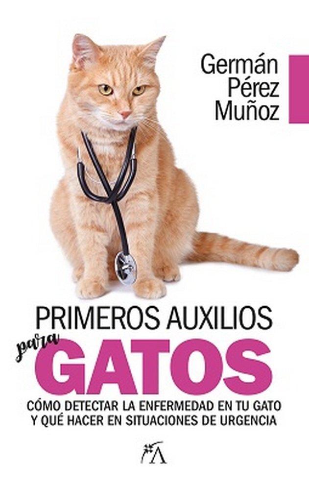 Primeros auxilios para gatos