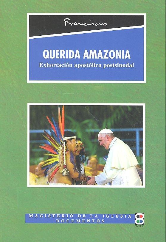 Querida amazonia exhortacion postsinodal