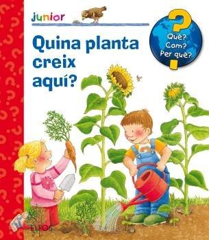 Que junior quina planta creix aqui