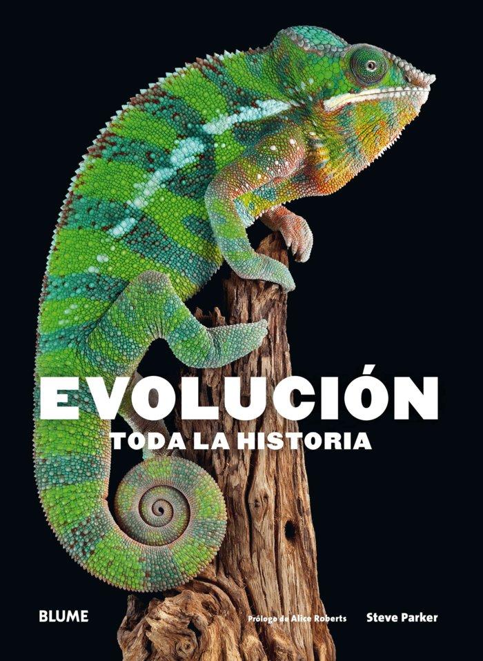 Evolucion. toda la historia (2018)