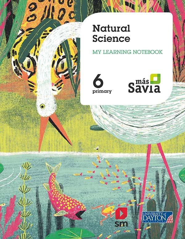 Natural science 6ºep wb 19 mas savia