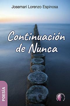Continuacion de nunca