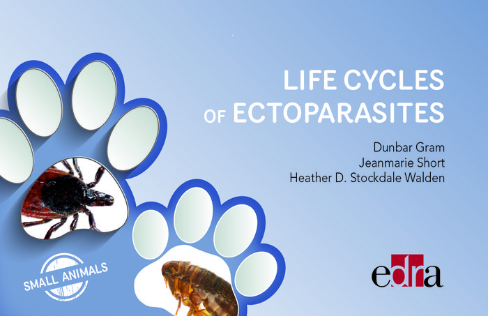 Life cycles of ectoparasites in small animals