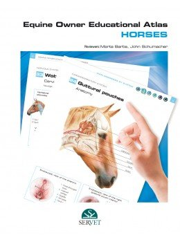 Equine owner educational atlas. horses