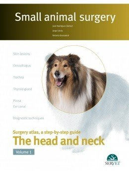 Small animal surgery the head and neck vol i