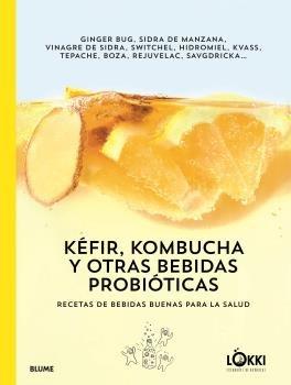 Kefir, kombucha y otras bebidas probioticas