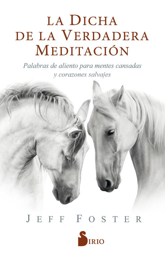 La dicha de la verdadera meditacion