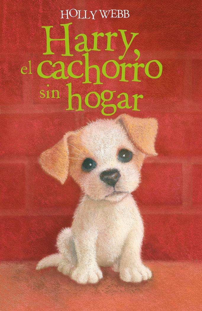 Harry,el cachorro sin hogar