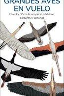 Grandes aves en vuelo guias desplegables tundra
