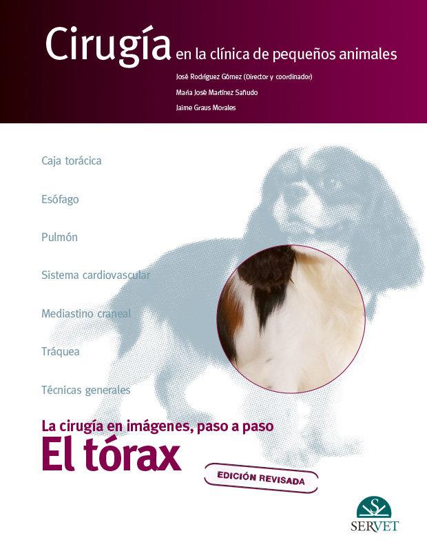 El torax cirugia en la clinica de pequeño