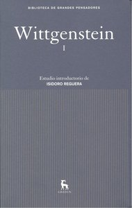 Wittgenstein i